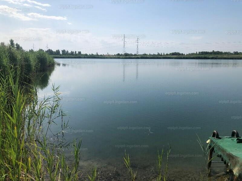 Dunavarsány, Pest megye