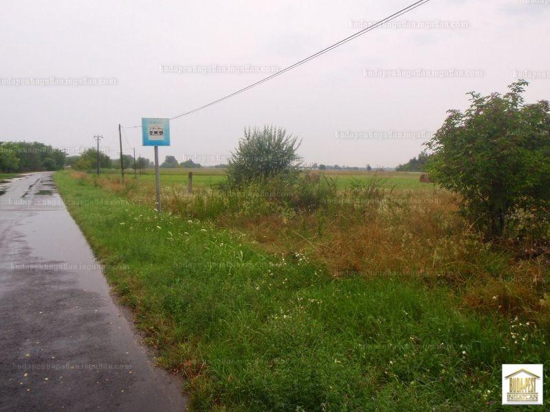 Szatymaz, Csongrád-Csanád megye