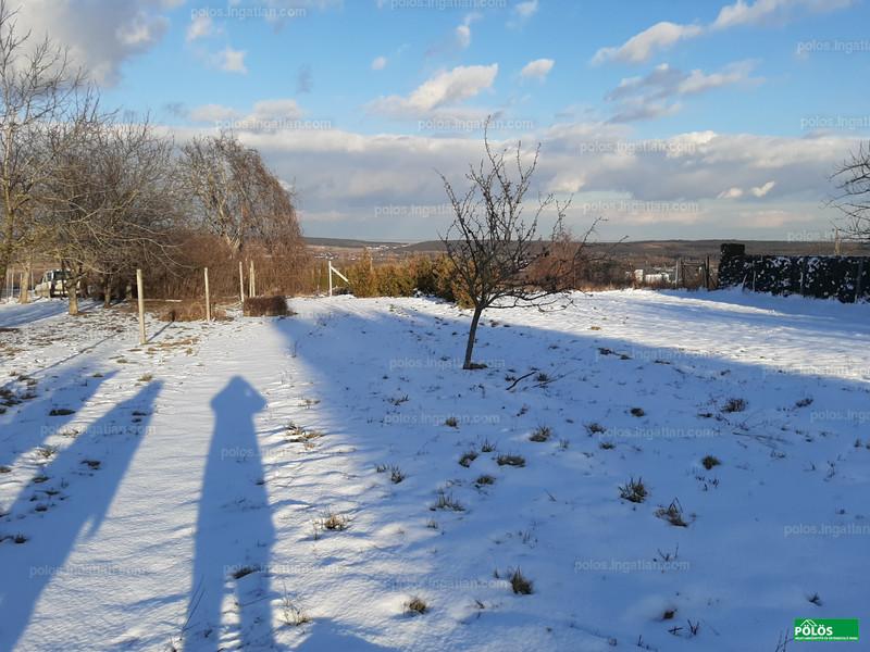 Sopron, Virágvölgy