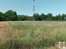Eladó mezőgazdasági terület, Balatonboglár - 2. kép