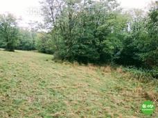 Kép az ingatlanról