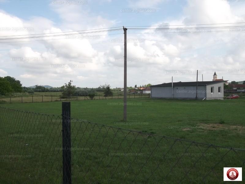 Nyúl, Győr-Moson-Sopron megye
