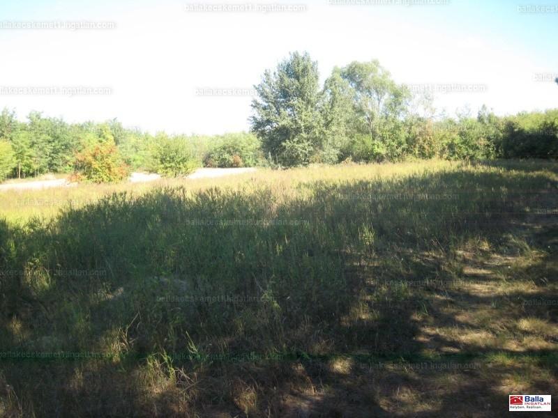Ingatlan, eladó ház, Ladánybene, Bács-Kiskun , 60 m2