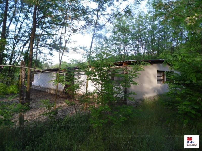 Ingatlan, eladó ház, Ladánybene, Bács-Kiskun , 85 m2