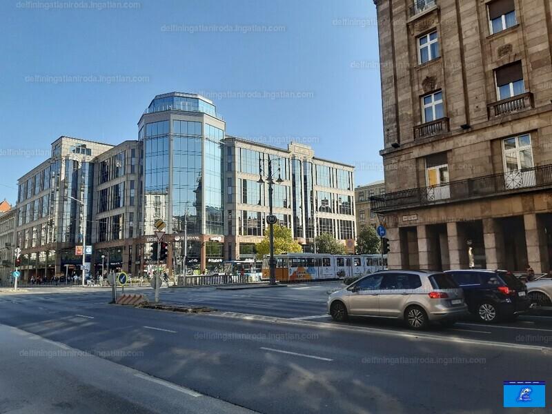 V. kerület, Semmelweis utca