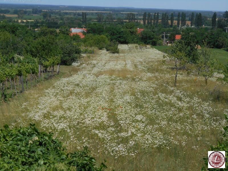 Csabrendek, Veszprém megye