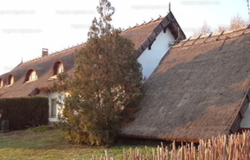 Kisújszállás, Jász-Nagykun-Szolnok megye