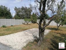 Eladó Székesfehérváron Feketehegyen egy 1136 m2-es zártkert