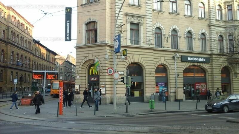 VIII. kerület, Bacsó Béla utca