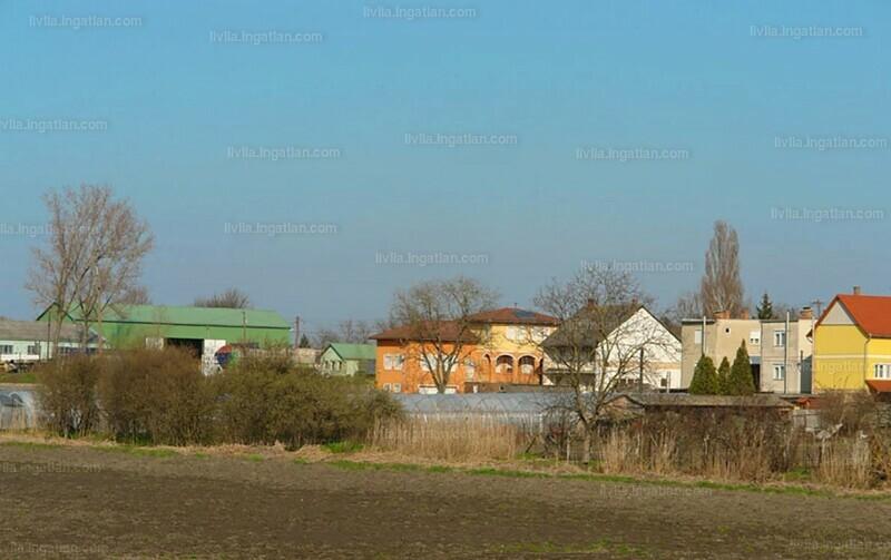 Tiszaföldvár, Jász-Nagykun-Szolnok megye