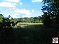Eladó mezőgazdasági terület, Várvölgy - 3. kép