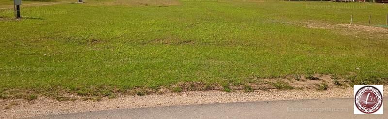 Sárszentmihály, Fejér megye